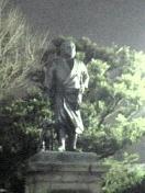 Saigodon